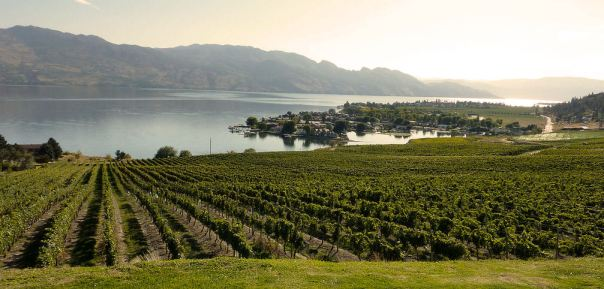 Okanagan Valley Kelowna Wineries