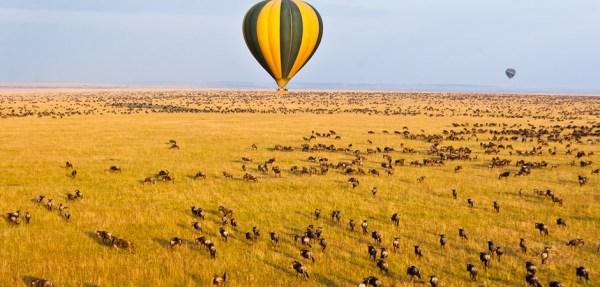 serengeti balooning
