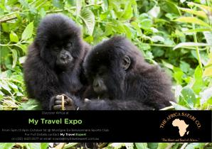 Discover Africa 2