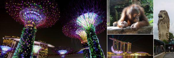 Singapore Combo
